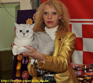 Выставка кошек Днепропетровск